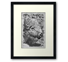 buffalo head Framed Print