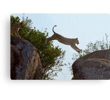 Leaping Lion Metal Print