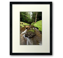 Downstream from Strickland Falls Framed Print