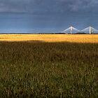 Early Morning Marsh and Modern Bridge by Joe Jennelle