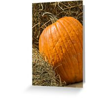 pumpkin in autumn Greeting Card