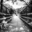 Bridges to Cross by Peyton Duncan