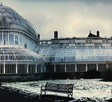 Belfast Botanical Gardens N.I by MrDtct
