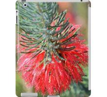 RED BOTTLE BRUSH iPad Case/Skin