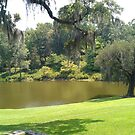On the Middleton Plantation, SC by RockyWalley