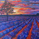 Sunset over lavender field by Inese