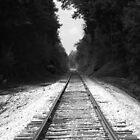 train tracks to the past by Tammy Devoll