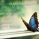 Special Moments Challenge Banner by Teresa Young