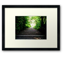 Step into the light!  Framed Print