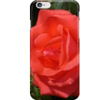 Scented Rose iPhone Case/Skin