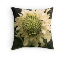 Cephalaria Flower Throw Pillow