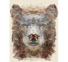 grizzly bear Photographic Print