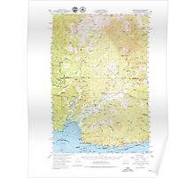 USGS Topo Map Washington Grays River 241405 1955 62500 Poster