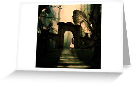 Alice in Wonderland by aciddream