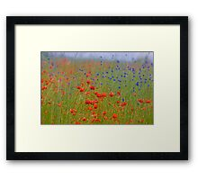 Wonderful red&blue . by Brown Sugar . OK ! friends so good !!! Views (390) favorited by (8) Thanks a bunch ! Framed Print