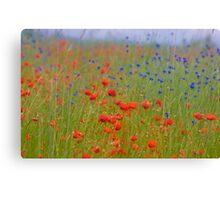 Wonderful red&blue . by Brown Sugar . OK ! friends so good !!! Views (390) favorited by (8) Thanks a bunch ! Canvas Print