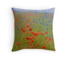 Wonderful red&blue . by Brown Sugar . OK ! friends so good !!! Views (390) favorited by (8) Thanks a bunch ! Throw Pillow