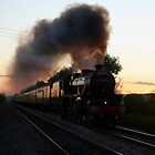 Manston Crossing, 9PM.  24/07/11 by Paul Holland