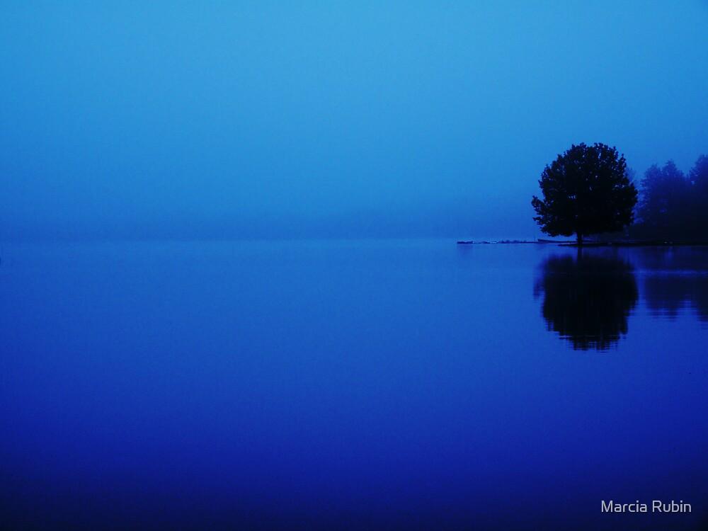 Early Morning Fog by Marcia Rubin