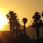 Havasu sunset by Christine Ford