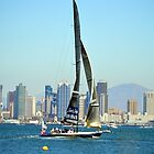 San Diego ~ America's Cup ~ Stars and Stripes by Marie Sharp