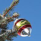 Snow sparkle on a Christmas ornament by Christine Ford