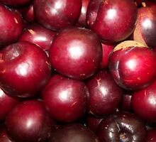 Juicy Plums by Mimmie Hunter