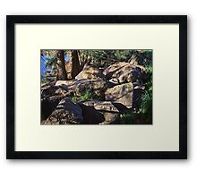Lake Ginninderra in Canberra/ACT/Australia (10) Framed Print