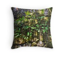 Ferns in the Walls Throw Pillow