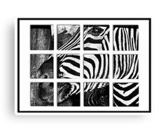 Zebra Puzzle Canvas Print