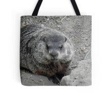 Groundhog day! Tote Bag