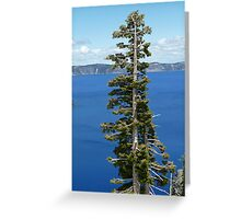 Crater Lake Oregon Tree Greeting Card