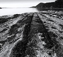Montague Beach - Galiano Island by Rod Preston Photography