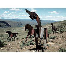 Iron Horses - Washington State Photographic Print