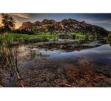 Swamp Calm Photographic Print