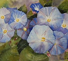 Morning Glory by Susan Moss