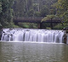 Malanda Falls by auswegoimages