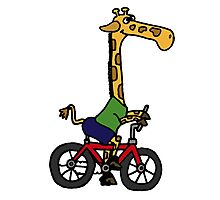 Funny Giraffe Riding Bicycle Photographic Print