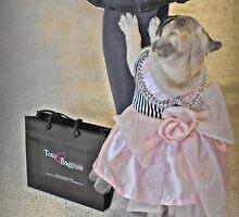 Fashion Guru by JaninesWorld