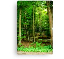A Summer Wood................ Canvas Print