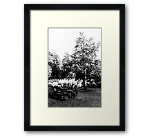 The Pear Tree. A Bush. Framed Print