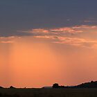 Serengeti Panorama by Michael Kilpatrick