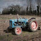 Old Fordson Tractor at Wicklewood, Norfolk by DaveTurner