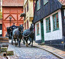 Aarhus. The Old Town by Aase