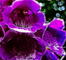 Fractal Flower by Den McKervey