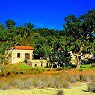 Old Olive press  Arkos islet Skiathos by larry flewers