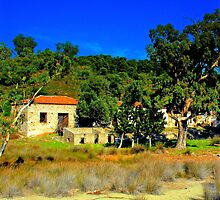 Old Olive press  Arkos islet Skiathos by larry flewers