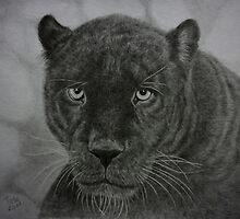 Black Leopard drawing by Istvan froghunter