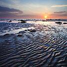 Walking in the sunset by Sergey Martyushev