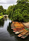 Punting On The Cam, Cambridge. by Darren Burroughs